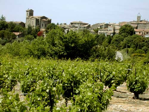 Saint Christol village and its vineyards